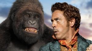 Dolittle Gorilla Robert Downey Jr 2560x1600 Wallpaper