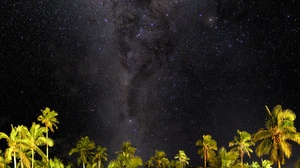 Milky Way Night Palm Tree Sky Starry Sky Stars 2048x1265 Wallpaper