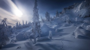 Russia Ural Nature Winter Snow Ice Cold 3543x2362 Wallpaper