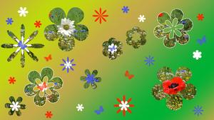 Artistic Digital Art Colors Flower Butterfly Gradient 1920x1080 wallpaper