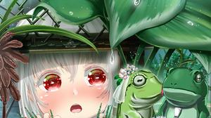 Anime Digital Art Anime Girls Barbed Wire Fence Rain Plants Frog Bridal Veil Daisies Kissing White H 1920x1343 Wallpaper