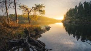 Forest Lake Sunrise Tree 2048x1344 Wallpaper