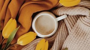 Cup Tulip Drink 2560x1600 Wallpaper