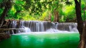 Nature Waterfall Plants Water Outdoors Trees 1920x1080 Wallpaper