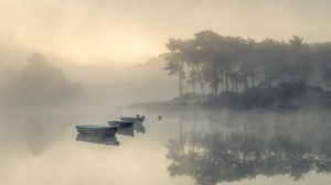 Nature Outdoors Water Calm Waters Boat Vehicle Sunlight Trees 2560x1600 Wallpaper