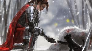 Armor Cape Cat Knight Woman Woman Warrior 3717x2402 Wallpaper