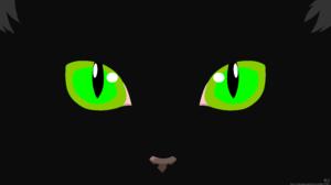 Black Cat Eye Minimalist 7680x4320 Wallpaper