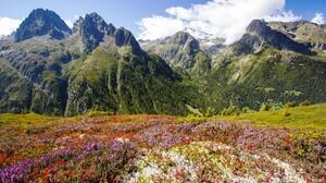 Chamonix Mont Blanc France Landscape Mountains Flowers Nature 1920x1080 Wallpaper