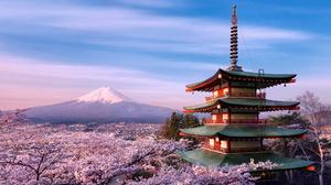 Flower Japan Light Mount Fuji Pagoda Pink Sakura 2048x1401 Wallpaper