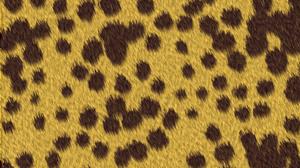 Abstract Brown Pattern Skin Spot Texture 3000x2000 Wallpaper