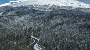 Landscape Nature Mountains Snowy Mountain Forest Road Portrait Display Outdoors Winter Snow 1638x2048 Wallpaper