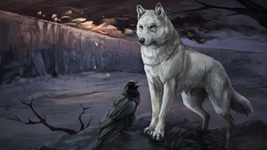 Crow Wolf 3600x2216 Wallpaper
