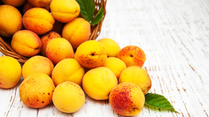 Apricot Fruit Still Life 2700x1800 Wallpaper