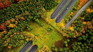 Nature Landscape Portrait Display Road Highway Aerial View Drone Photo Forest Trees Car Fall Wildlif 1080x1351 Wallpaper