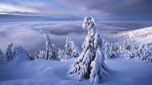 Cloud Snow Tree Landscape Nature Czech Republic Horizon 2048x1365 Wallpaper
