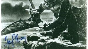 King Kong 1600x1256 Wallpaper