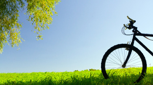 Vehicles Bicycle 1920x1200 Wallpaper