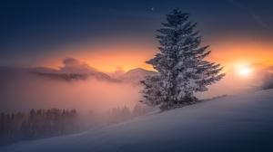 Austria Nature Snow Sunset Tree Winter 1920x1280 Wallpaper