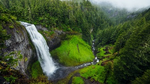 Cliff Fog Forest Moss Nature Stream Waterfall 6945x4635 Wallpaper