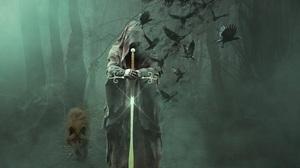 Bird Crow Dark Skull Sword Wolf 4535x3401 Wallpaper