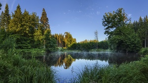 Forest Lake Summer 3840x2160 Wallpaper