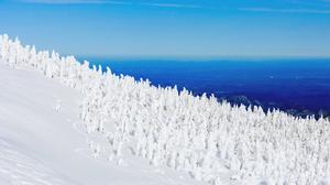 Snow Snow Covered Sky Snowy Mountain Snowy Peak 3840x2302 Wallpaper