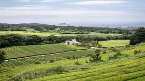 House Rural Garden Landscape Architecture 2000x1125 wallpaper