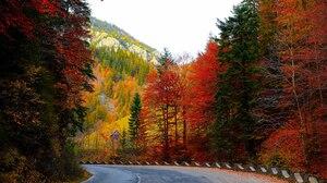 Fall Road 3000x2065 wallpaper