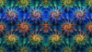 Artistic Colors Digital Art Fractal Pattern 1920x1080 Wallpaper