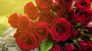 Bouquet Flower Rose 2880x1800 Wallpaper