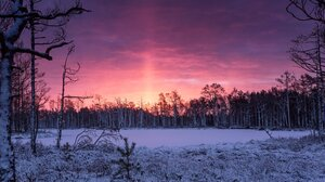 Forest Trees Sunset Snow Winter Snow Covered Sky 1700x876 Wallpaper