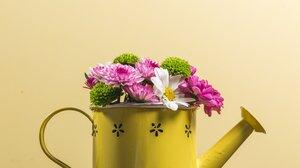 Flower Watering Can 4460x2973 wallpaper