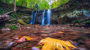 Waterfall Stream Water Forest Leaves Photography Nature Outdoors 2645x1889 Wallpaper