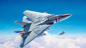 Aircraft Grumman F 14 Tomcat Jet Fighter Warplane 2048x1651 wallpaper