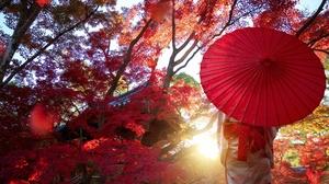 Asian Fall Girl Umbrella 6144x3616 Wallpaper