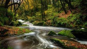 Forest Moss Nature River Rock 2048x1366 Wallpaper