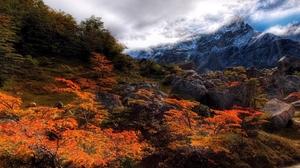 Nature Tree Mountain Rock Landscape Hdr 1920x1200 Wallpaper