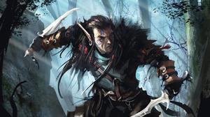 Assassin Dagger Elf Man Pointed Ears Warrior 1920x1396 Wallpaper