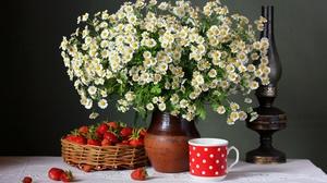 Flower Berry Chamomile Strawberry Fruit 4364x3200 Wallpaper