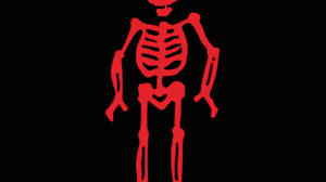 Pirates Flag Skull And Bones Skull 2560x1915 Wallpaper