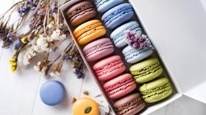 Macaron Still Life Sweets 6016x4016 wallpaper