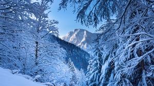 Alps Austria Mountain Snow Winter 6000x4000 Wallpaper