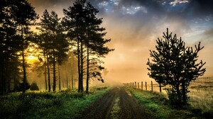Country Dirt Road Fence Field Fog Grass Road Tree 2048x1283 Wallpaper