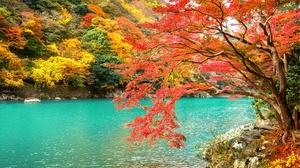 Japan Kyoto Nature Park Lake Arashiyama 4928x2772 wallpaper
