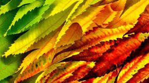 Earth Leaf 4928x3264 Wallpaper