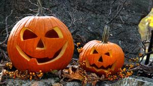 Pumpkin Nature Halloween 1920x1200 wallpaper