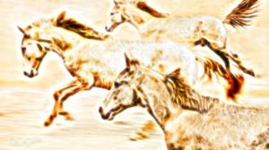 Animal Artistic Fractal Horse 2156x1430 Wallpaper