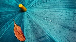 Umbrella 5616x3744 wallpaper