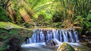 Bamboo Moss Nature Rock Stream Sunbeam Waterfall 2048x1365 Wallpaper