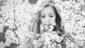 Outdoors Plants Cherry Blossom Children Portrait Long Hair Photography Monochrome Flowers Women Outd 2048x1365 wallpaper